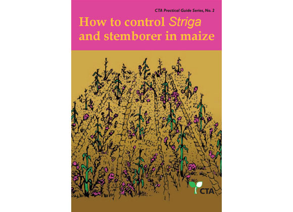 Control Striga in Maize