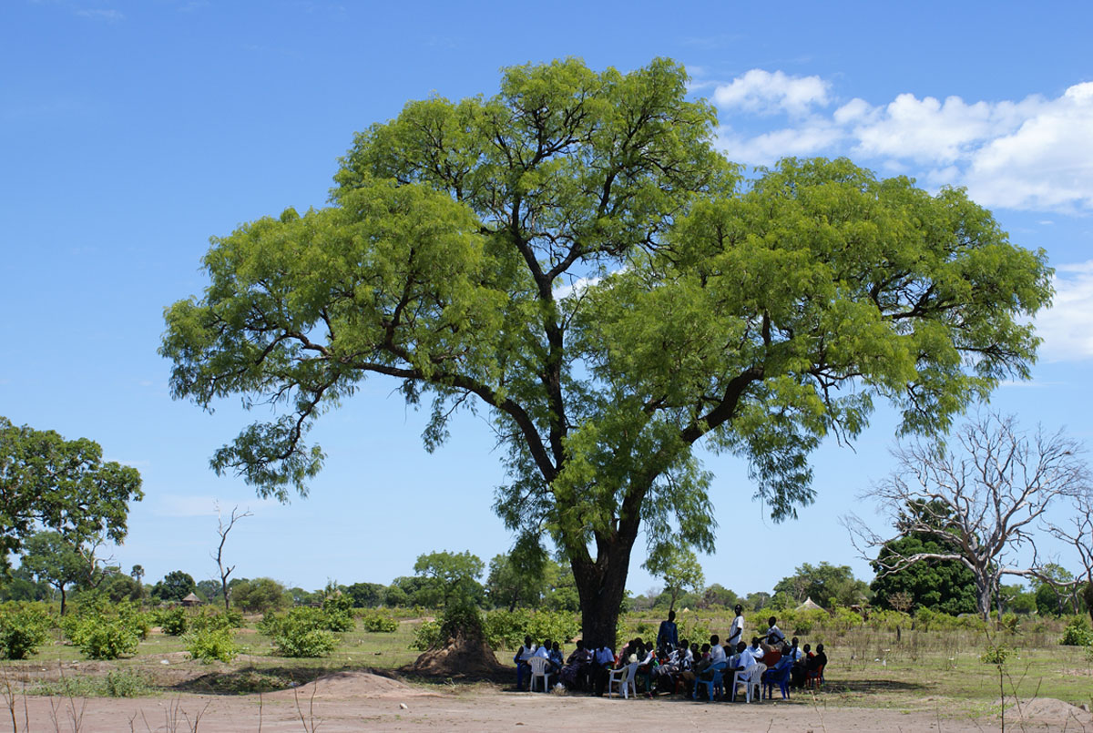 Gathering under a tree in South Sudan