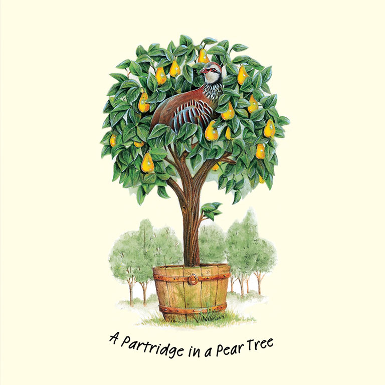Partridge in a Pear Tree – £3.99 *